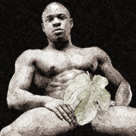 Ficus Carica (ref. photo (c) muscle hunks.com